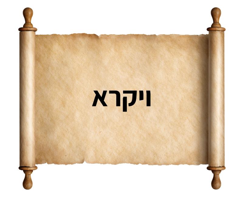 חומש ויקרא הרב עדס